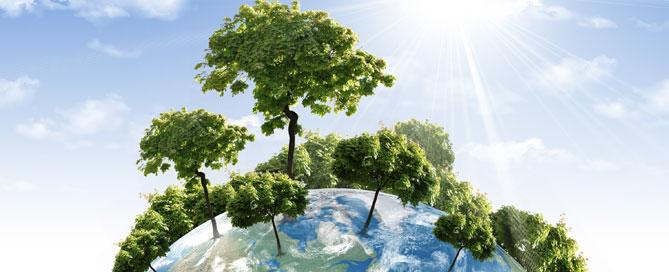 environmental-stewardship
